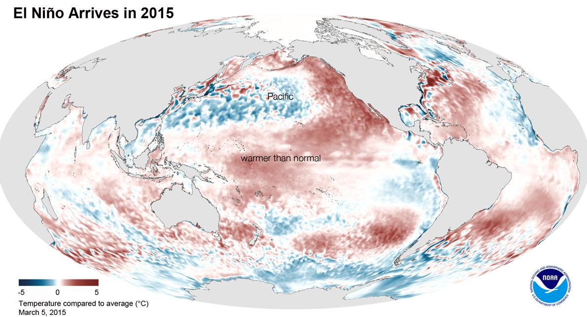 Attendu pendant une bonne partie de 2014, El Nino est finalement arrivé en ce début 2015. A ce jour, les scientifiques de l'agence américaine NOAA lui donnent une chance sur deux de rester jusqu'à la fin de l'année.