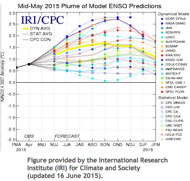 """Simulation de l'évolution du phénomène El Nino en 2015: différents modèles lui promettent une puissance """"forte"""" (dépassant sur ce graphique une anomalie de +1,5°C par rapport à la  température normale du Pacifique au niveau de l'équateur ), sinon """"modérée"""" (anomalie de +1 à +1,5°C). Doc. NOAA."""