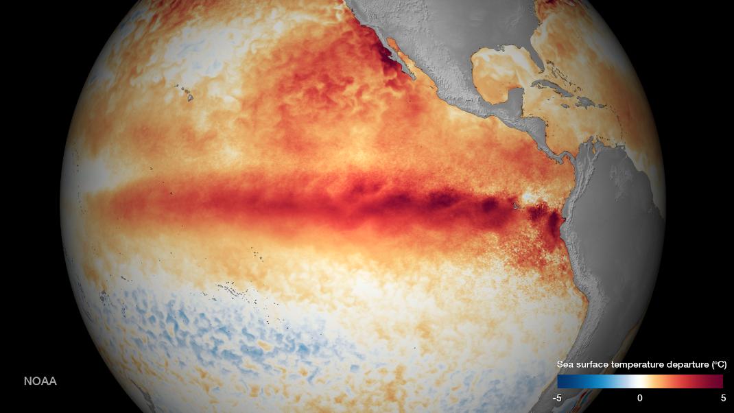 Le phénomène El Nino en octobre 2015. Doc. NOAA