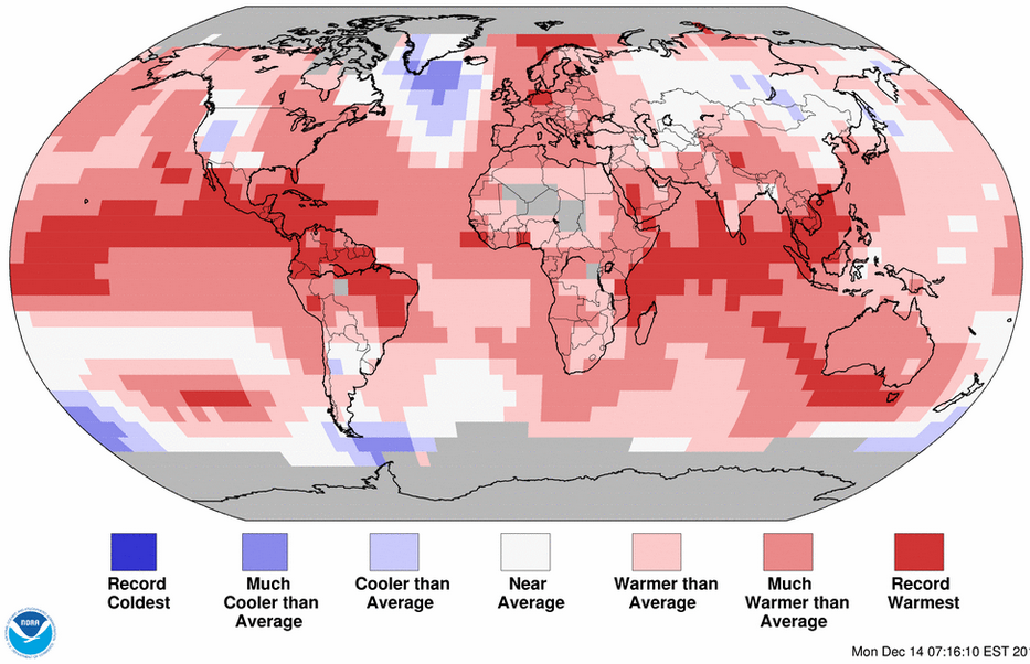 Anomalies de température pour le mois de novembre 2015. Les records tombent dans les océans Pacifique et Indien.