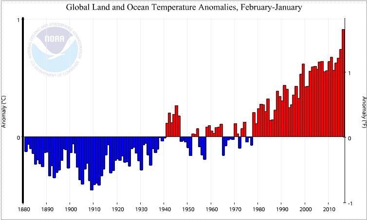Une période de douze mois février 2015 - janvier 2016 largement plus chaude que les précédentes. Doc. NOAA.