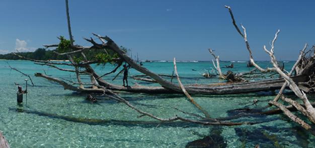 Dans l'Archipel des Salomon, l'île de Sogomou rongée par la montée des eaux... Doc. ERL