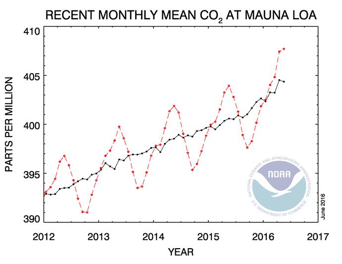Evolution de la concentration de CO2 à l'Observatoire de Mauna Loa. La courbe en noire représente l'évolution de la concentration en données corrigées des variations saisonnières. Doc. NOAA