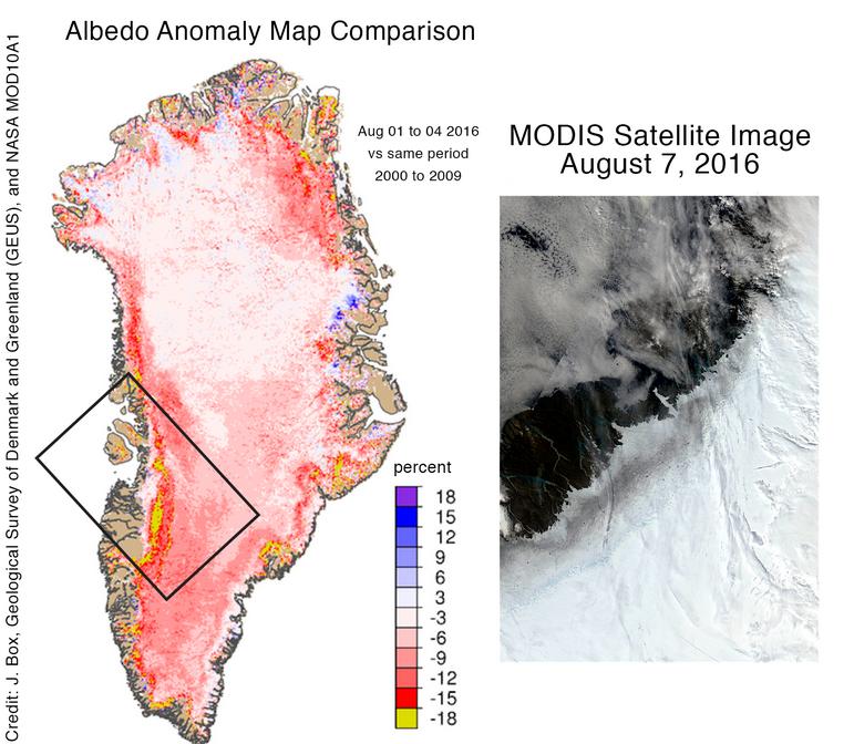 Anomalie d'albédo mesurée début août 2016 par rapport à la moyenne des début août de la période 2000 - 2009. Doc. NSIDC